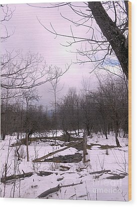 The Pink Winter Light On The Mountain Top Wood Print by Patricia Keller