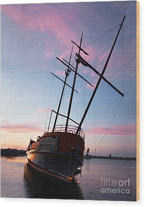 The Pirate Ship Wood Print by Barbara McMahon