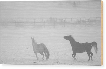 The Play Of Horses Wood Print