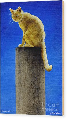 The Pole Cat... Wood Print by Will Bullas
