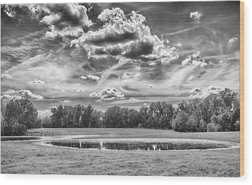 Wood Print featuring the photograph The Pond by Howard Salmon