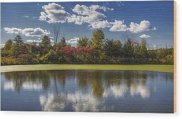 The Pond In Autumn Wood Print by Steve Gravano