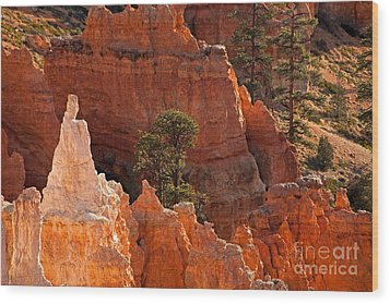 The Popesunrise Point Bryce Canyon National Park Wood Print