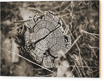 Wood Print featuring the photograph The Post by Amber Kresge