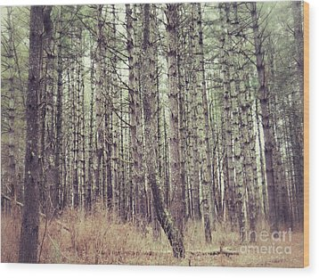 Wood Print featuring the photograph The Preaching Of The Pines by Kerri Farley