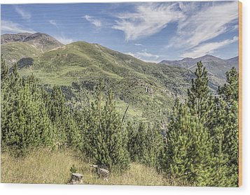 The Puigmal Seen From The Collet De Les Barraques In Catalonia Wood Print