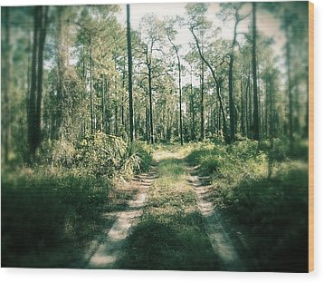 The Quiet Walk Wood Print by Chasity Johnson