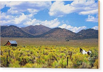 Wood Print featuring the photograph The Ranch by Marilyn Diaz
