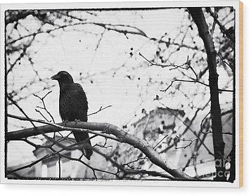 The Raven Wood Print by John Rizzuto