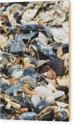 Wood Print featuring the photograph The Raw Bar by Joan Davis