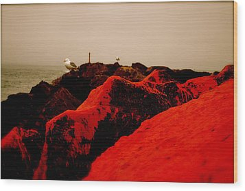 The Red Dawn Wood Print by Sheldon Blackwell