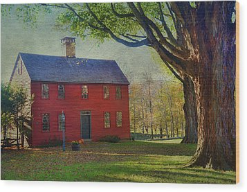 Wood Print featuring the photograph The Red House by Barbara Manis