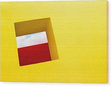 the Red Rectangle Wood Print by Prakash Ghai