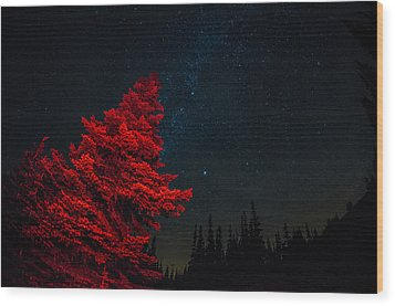 The Red Tree On A Starry Night Wood Print by Brian Xavier