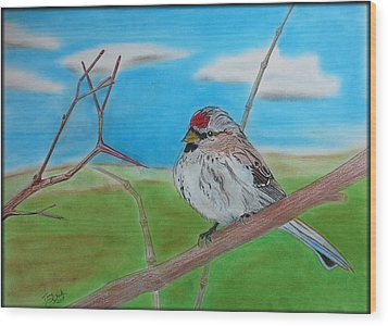 The Redpoll Wood Print