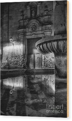 The Reflection Of Fountain Wood Print by Erhan OZBIYIK