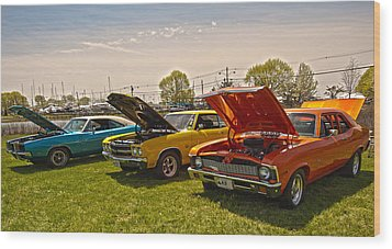 The Rides Wood Print by Terry Cosgrave
