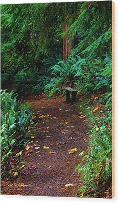 The Right Path Wood Print by Jeanette C Landstrom
