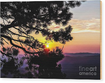 The Rising Sun-2 Wood Print by Nancy Marie Ricketts