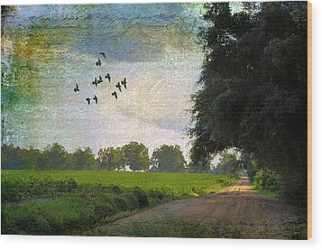 The Road Home Wood Print by Jan Amiss Photography