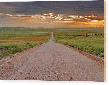 The Road Less Traveled Wood Print by Teri Virbickis
