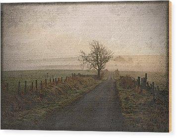 The Road Not Taken Wood Print by Liz  Alderdice
