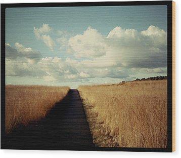 The Road Rarely Taken Wood Print by Beril Sirmacek