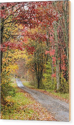 The Road Through Fall Wood Print by Robert Camp