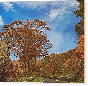 The Road To Autumn Wood Print by Kim Hojnacki