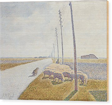 The Road To Nieuport Wood Print by Willy Finch