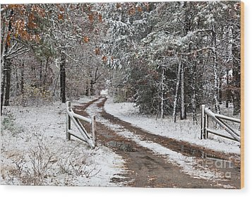The Road To The River Wood Print by Michelle Wiarda