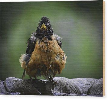 The Robin At 6-58 A.m. Wood Print