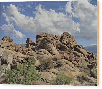 Wood Print featuring the photograph The Rock Garden by Michael Pickett
