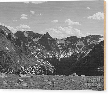 The Rockies Monochrome Wood Print by Barbara Bardzik