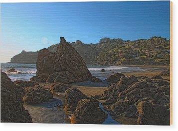 The Rocky Coast Iv Wood Print by Scott Cameron