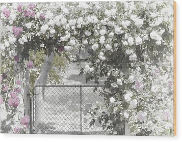 The Rose Arbor Wood Print by Elaine Teague