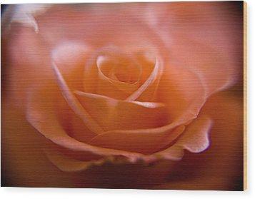 The Rose Wood Print by Kim Lagerhem
