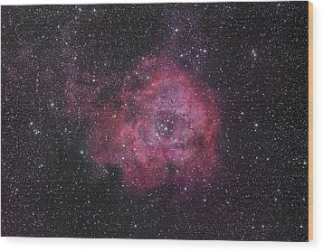 The Rosette Nebula Wood Print by Brian Peterson