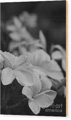 The Sacred Garden Wood Print by Sharon Mau