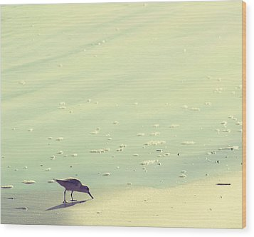 The Sandpiper Wood Print by Amy Tyler