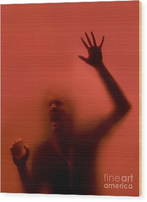 The Scream Wood Print by Diane Diederich