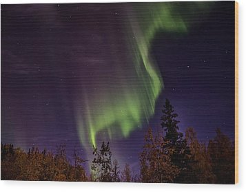 The September Aurora Fairbanks Alaska Wood Print