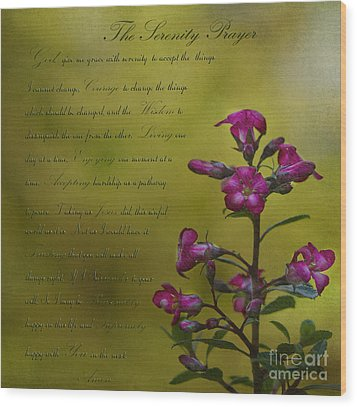 The Serenity Prayer  Wood Print by MaryJane Armstrong