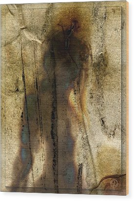 The Shadow Of Her Wood Print by Gun Legler