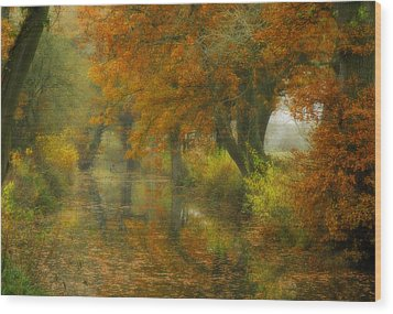The Shire Wood Print by John Chivers