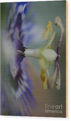 The Side Of Passion Wood Print by Nicole Markmann Nelson
