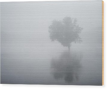 The Silence Is Deafening Wood Print