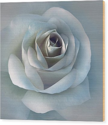 The Silver Luminous Rose Flower Wood Print by Jennie Marie Schell