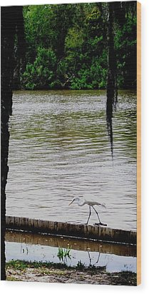 The Single Flyer Wood Print by Robin Lewis
