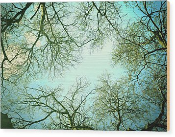 The Sky Wood Print by Guido Montanes Castillo